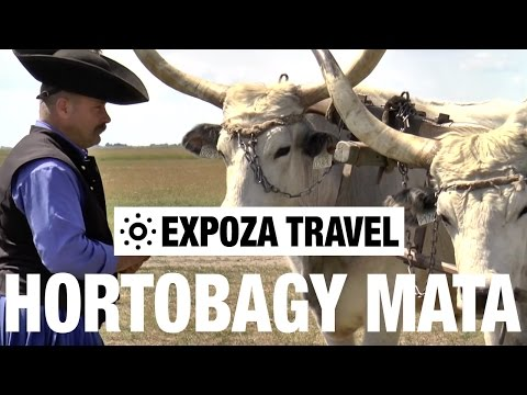 Hortobagy mata (Hungary) Vacation Travel Video Guide