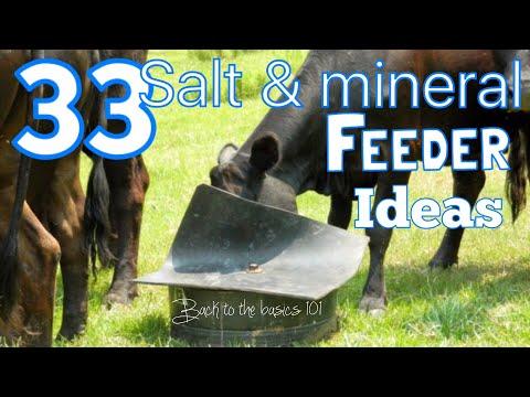 33 Livestock Salt & Mineral Ideas.