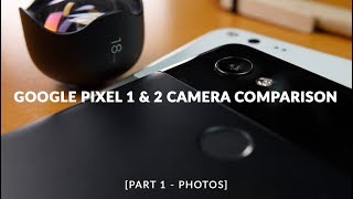 Pixel 2 XL vs Pixel XL (2016): Ultimate Camera Comparison (Part 1: Photos)