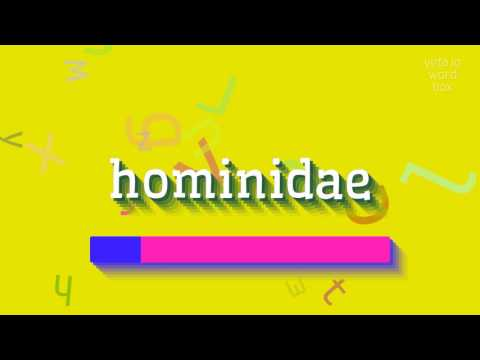"""How to say """"hominidae""""! (High Quality Voices)"""