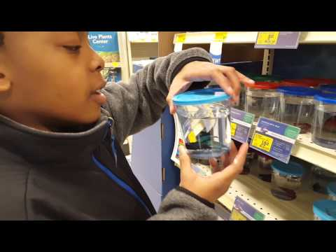SHOPPING FOR OUR NEW TURTLE TANK!!!