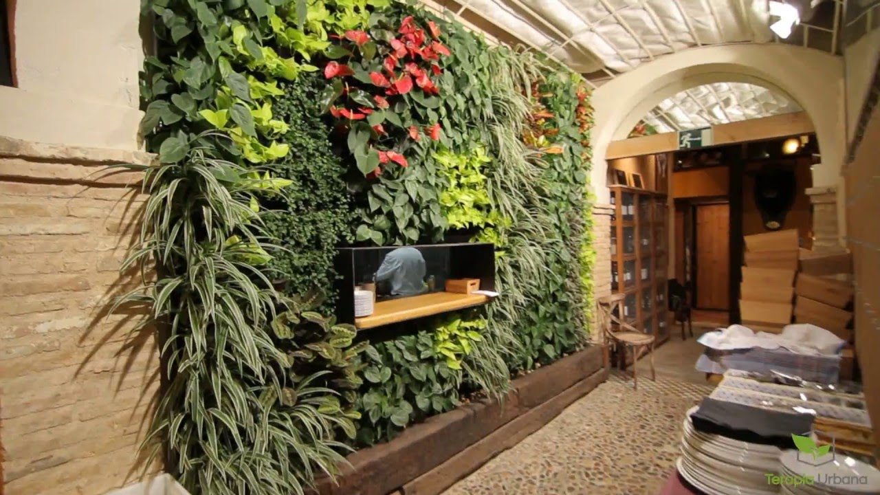 Jard n vertical en sevilla bar pelayo youtube for Jardin vertical interior casero