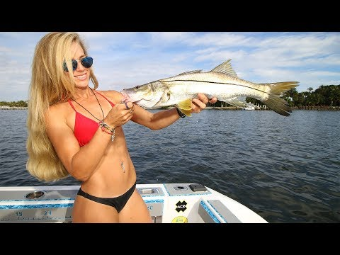 Offshore to Inshore Florida Fishing, First Trip of the Year GoPro Video! Little Tuna, Snook, & Crab