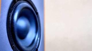 Speaker in slow motion