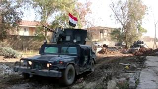 أخبار عربية: القوات العراقية تحرر جامعة الموصل وتكتشف مختبرات كيميائية