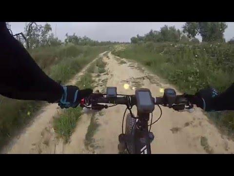 Ruta Camas Santiponce Salteras Gines Villanueva Del Ariscal Olivares Santiponce y Camas