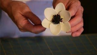 How to Make Sugar Flower Anemones : Wedding Cakes