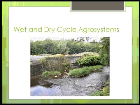 SAT100 Unit 7 Part 1 Environmental Factors -- Humidity, Rainfall and Wind