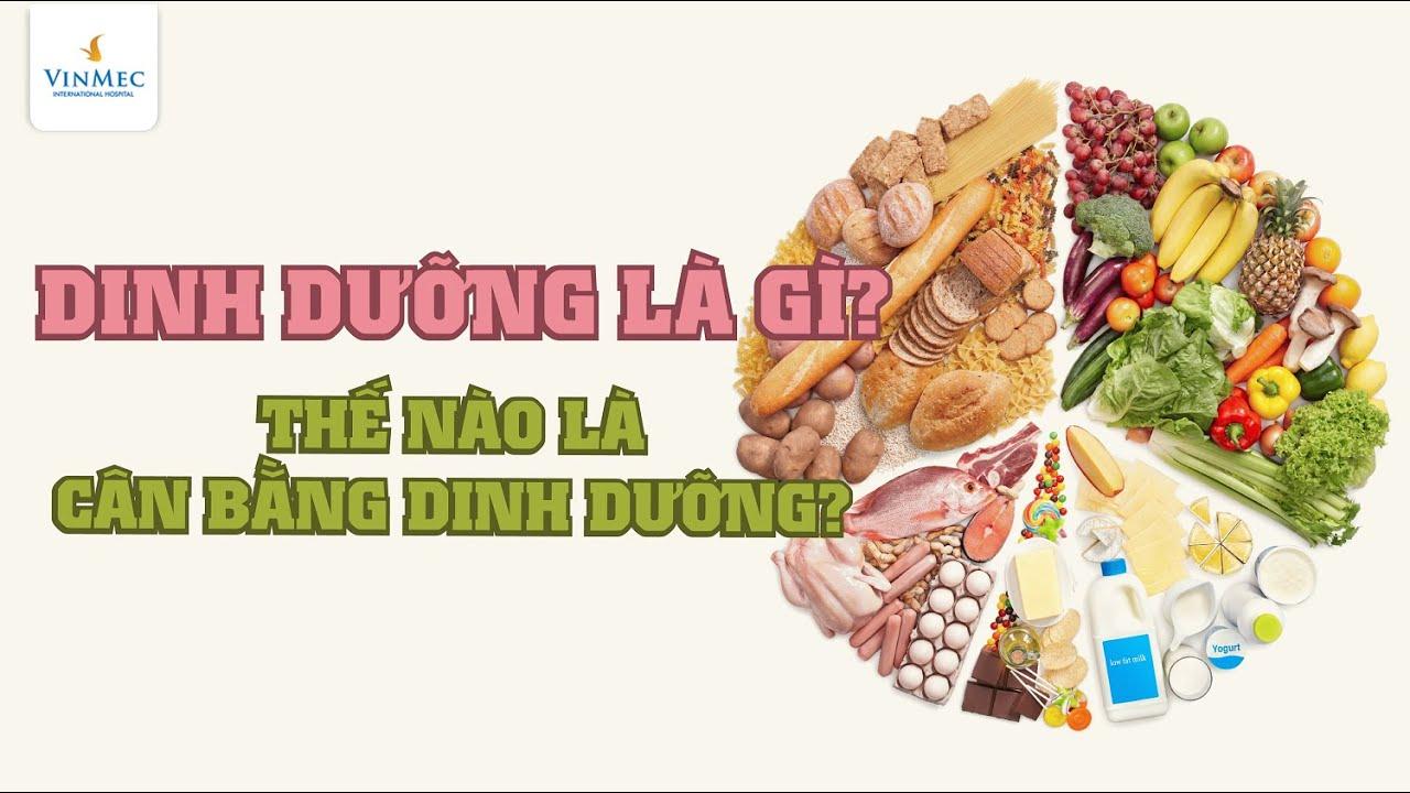 Dinh dưỡng là gì? Thế nào là dinh dưỡng cân bằng?