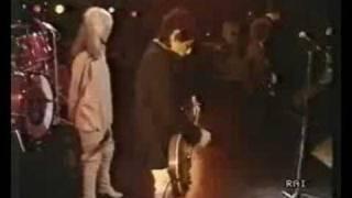 Blondie Detroit 442 Live