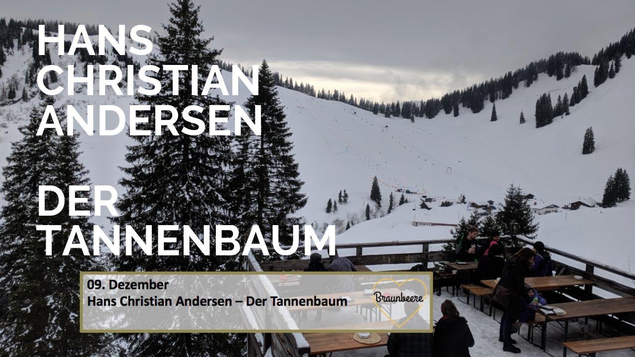 Märchen Von Hans Christian Andersen Der Tannenbaum.9 Dezember Hans Christian Andersen Der Tannenbaum Adventskalender