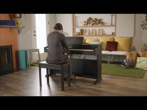 Yamaha ARIUS YDP-164 Digital Piano Overview