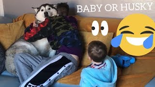 The Funny Reasons Why My Baby Is More Of A Dog Than My Dog..... [TRY NOT TO LAUGH]