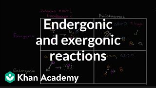 Endergonic, Exergonic, Exothermic And Endothermic Reactions