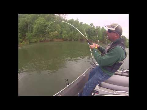Battle With A Monster Blue Catfish!