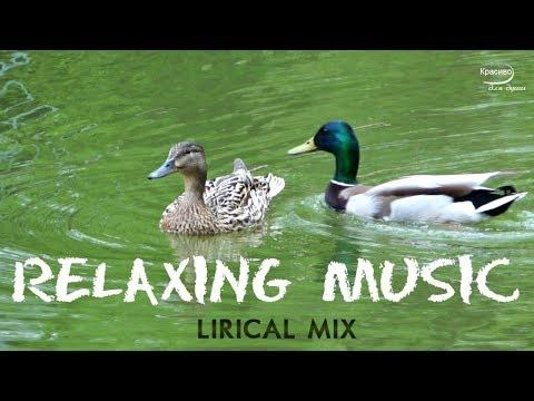✔ Сборник очень красивых потрясающих мелодий и природа NICE RELAXING MUSIC
