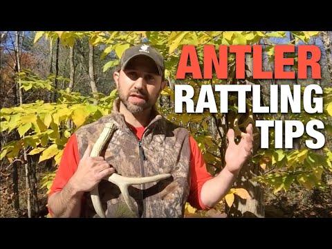 Antler Rattling Tips Based On Deer Research