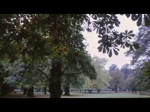 Emitt Rhodes - Holly Park