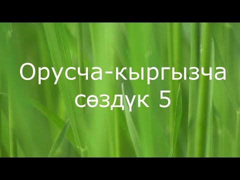 Обучение Кыргызскому языку Online, русско-кыргызский