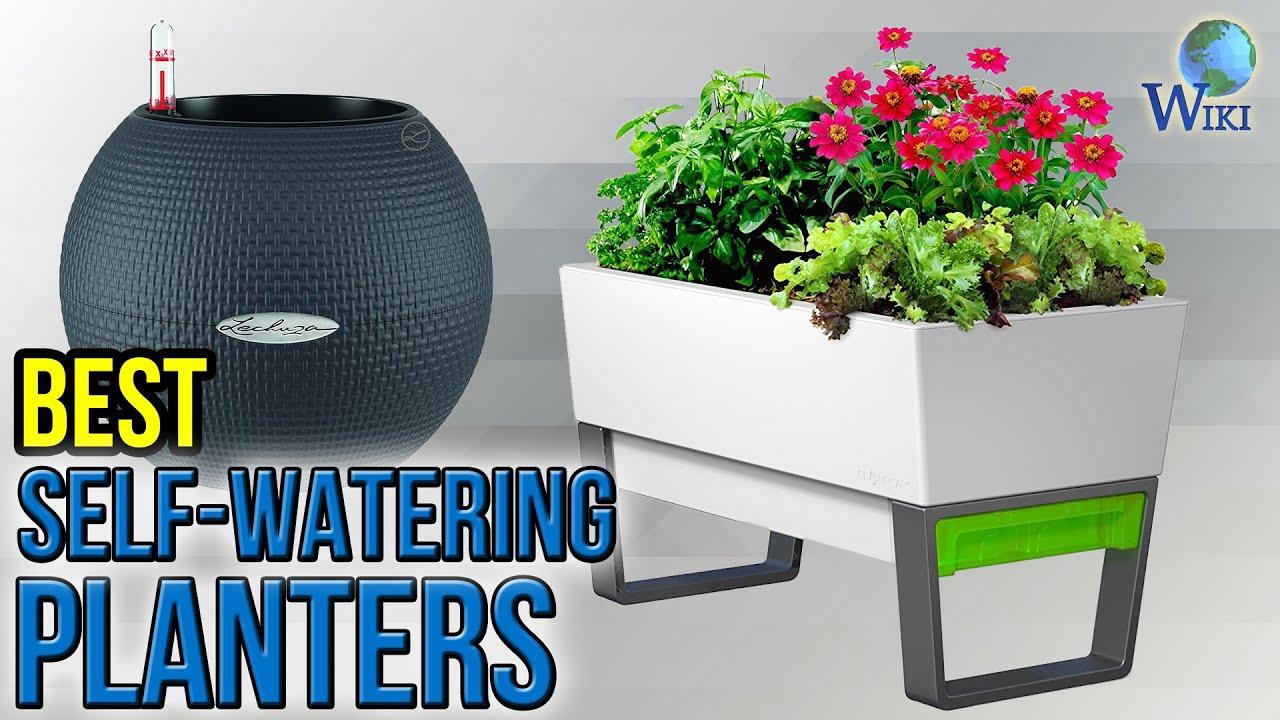 10 Best Self-Watering Planters 2017 - YouTube