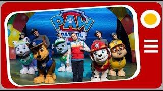 Patrulha Canina o Show - Apresentação thumbnail