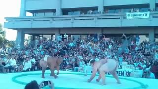 417 Pound Sumo Wrestler Body Slammed