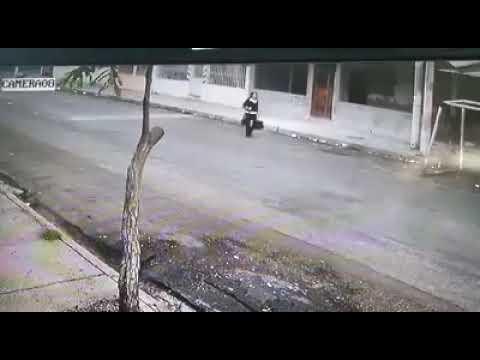 #Perros #atemorizan a #delincuente  en #Guayaquil