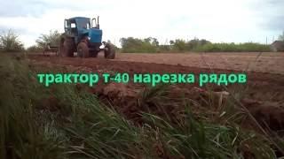 Трактор т-40 нарезка рядов под картофель/Ciągnik t-40 krojenie rzędów pod ziemniaki