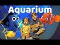 HUGE FISH Aquarium Adventure - Rafael and Abigail