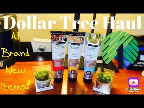 Dollar Tree Haul- All New Items