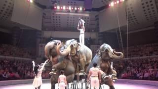 """Аттракцион « Слоны» пр Кристиана и Алекса Гертнер ГерманияAttraction """"Elephants"""""""