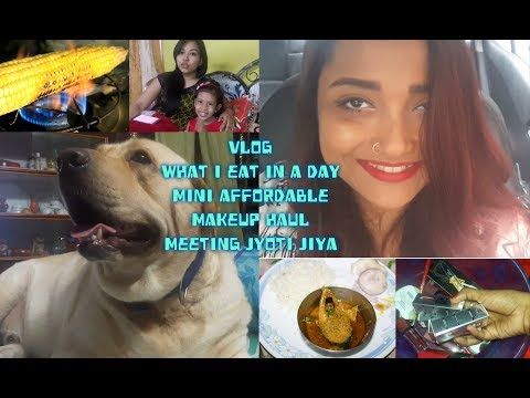 Vlog|Day in My Life| What I eat in a Day(Healthy Version)|Affordable Makeup Haul| Meeting JyotiJiya