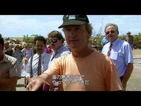 SHARKWATER 神秘なる海の世界(予告編)