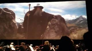 "LOTR FOTR In Concert ""The Ring Goes South"""