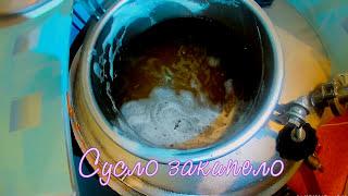 Ячменное Пиво.  Видеорецепт (50л)