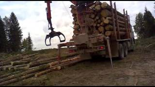 Погрузка леса камазом с фишкой