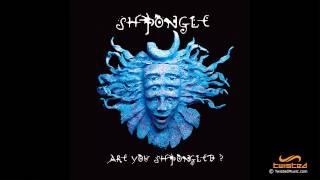 Shpongle - Are You Shpongled? [FULL ALBUM]