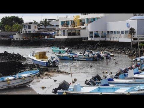 Puerto Ayora, Santa Cruz, Celebrity Xpedition