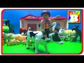 Familii de animale animale domestice si sunetele lor  Playmobil Story  Bogdan`s Show