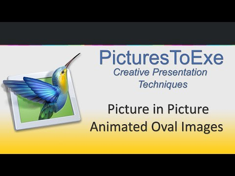 Creative AV   Video 006   Picture In Picture Animated Ovals
