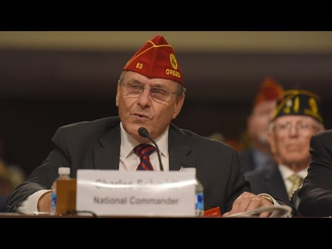 2017 American Legion National Commander Testimony