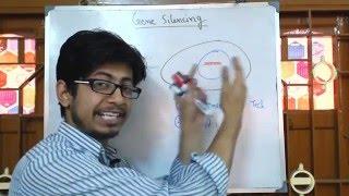 Gene Silencing mechanism
