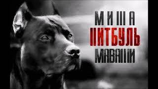 Миша Маваши-Московский озорной гуляка (стих С.А.Есенин)