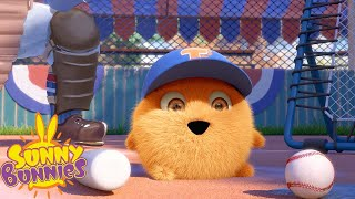 SUNNY BUNNIES - Baseball Turbo   Season 3   Cartoons for Children
