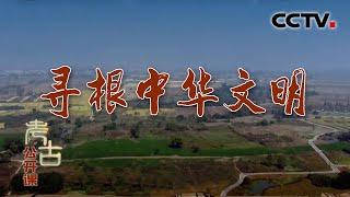 《考古公开课》 20200517 寻根中华文明| CCTV科教