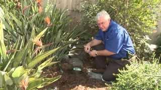 Install Soil Moisture Sensor