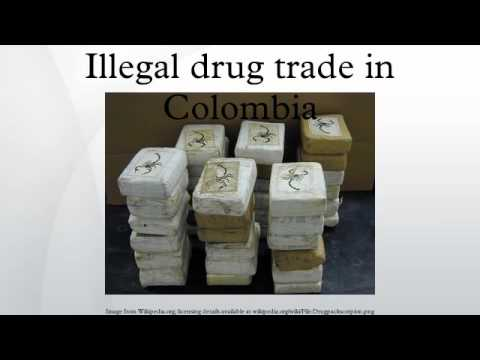 illegal drug trafficking essay United nations office on drugs and crime vienna an introduction to human trafficking: vulnerability, impact and action united nations new york, 2008.