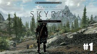 Skyrim: Special Edition (Подробное прохождение) #1 - Новое большое приключение