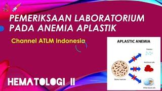 Hematologi: Hemoglibin dan Anemia | Medulab.