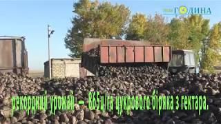 День працівників сільського господарства у Кобеляках
